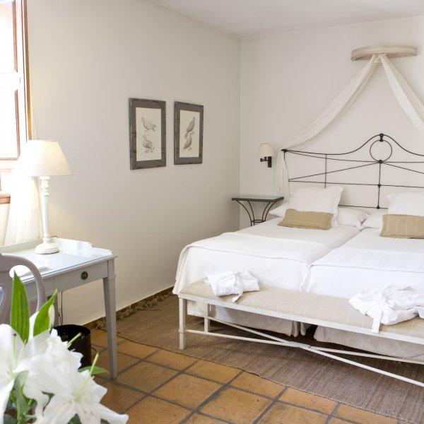 Habitacion  Twin Premium Palacio de los Navas